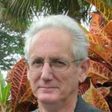 Mangrove Trimmer, Certified Arborist, #1 Award Florida ...